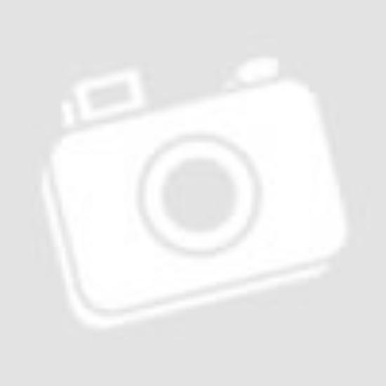 CMT Speciális DADO szett 206x15,87 Z24